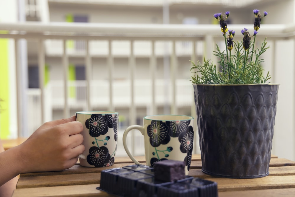 two white and black floral ceramic mugs