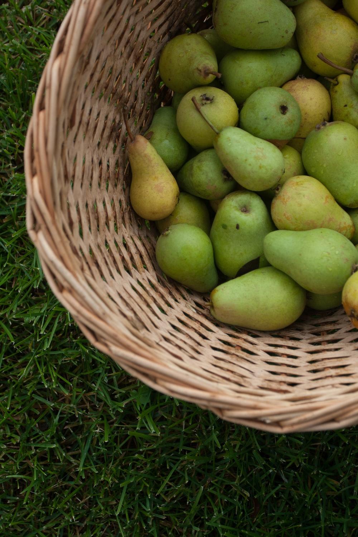 pile of green pears in wicker basket