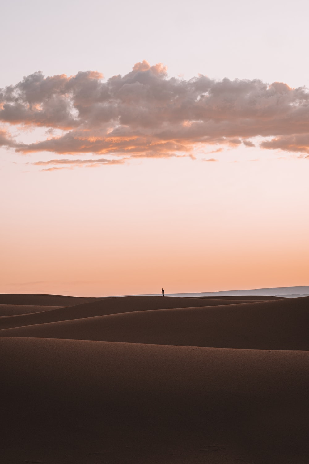 silhouette of person standing on desert