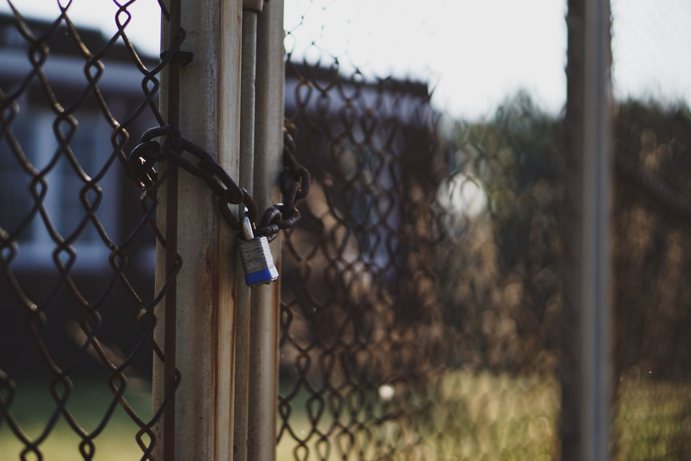 gray and blue padlock locked on mesh-link gate