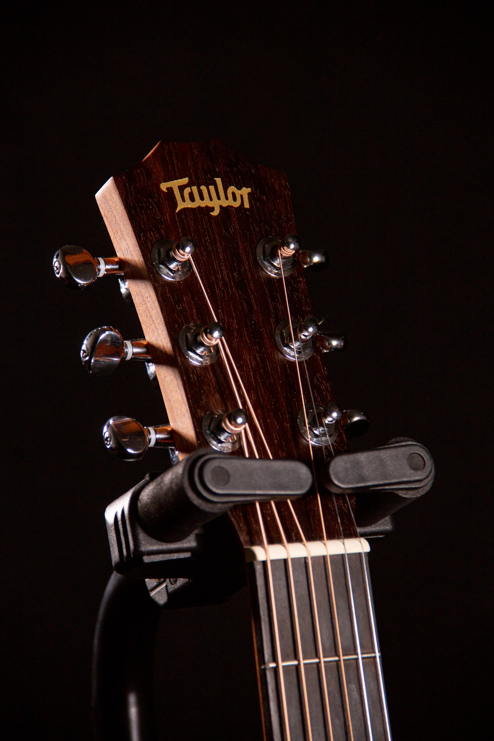 brown and black Taylor guitar headstock