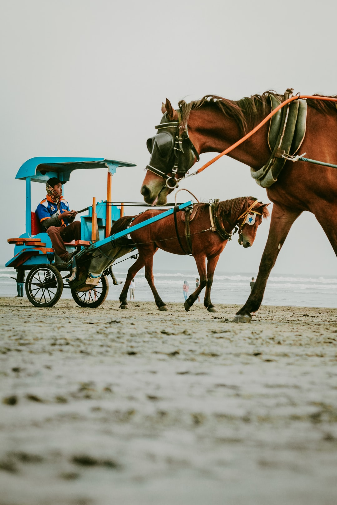 On the beach of Parang Tritis You can find many horses and other unique and traditional transportation, and make this place more interesting and memorable after visiting here, come visit the island of Java in Indonesia.