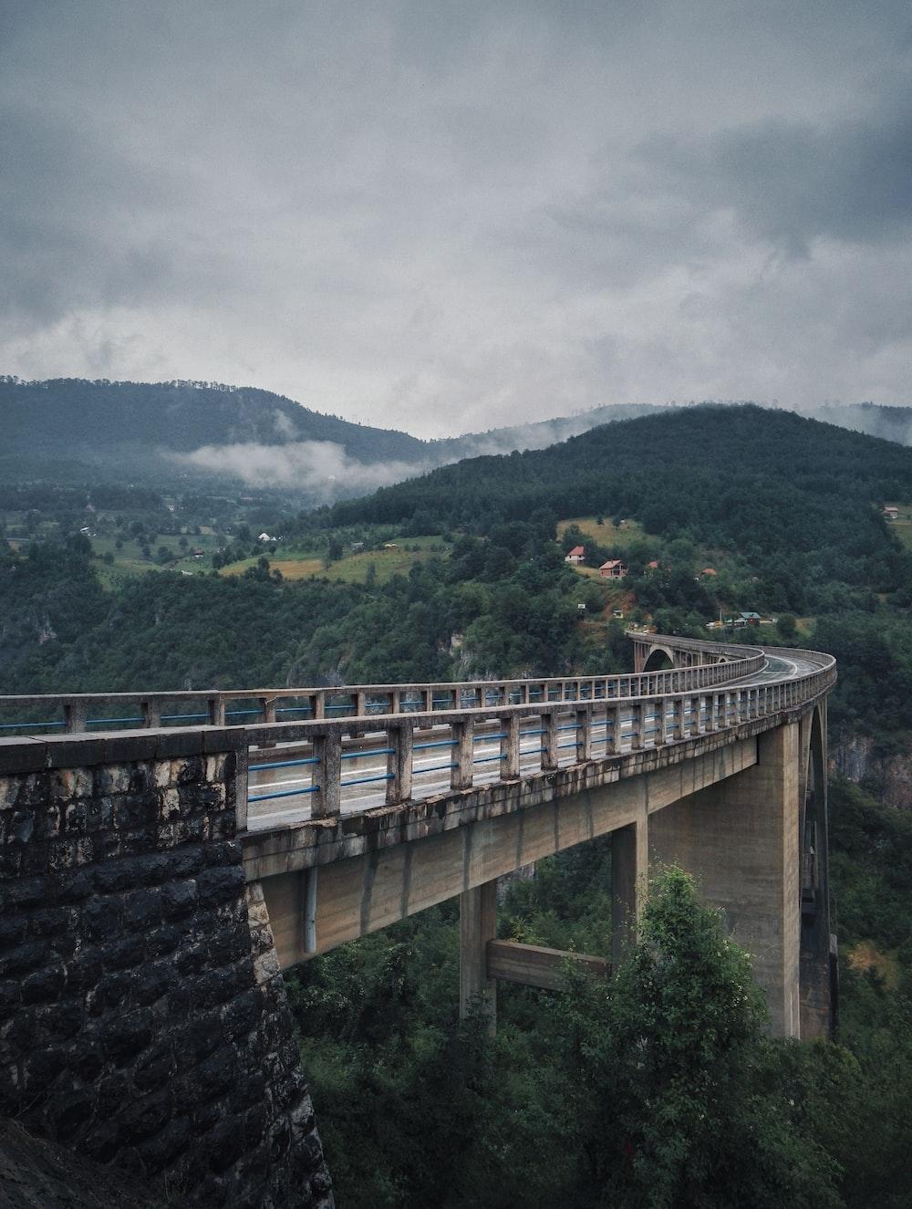 gray concrete above trees bridge during day