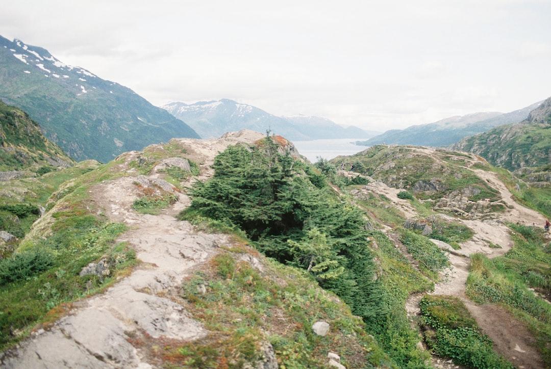 Portage Glacier in Alaska. Landscape on 35mm film.