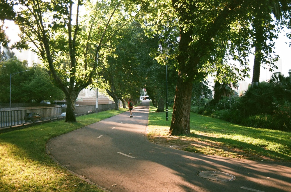 person standing in the middle of the road near trees