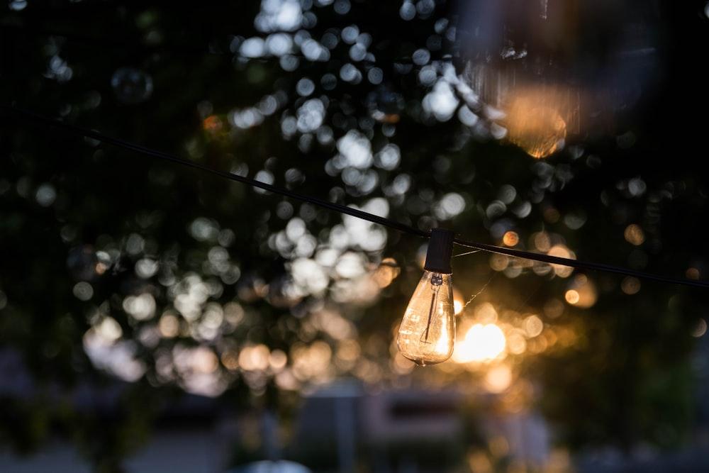 filament bulb behind bokeh lights