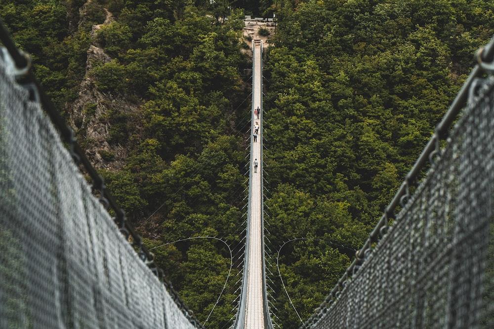 people walking on bridge during day