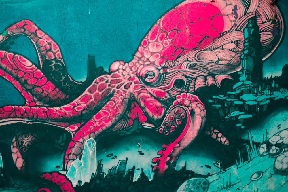 pink octopus illustration
