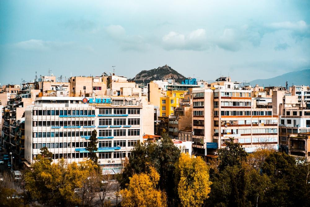 aerial photo of trees beside buildings