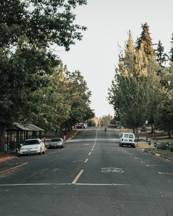 a tree-lined street in Eugene, OR