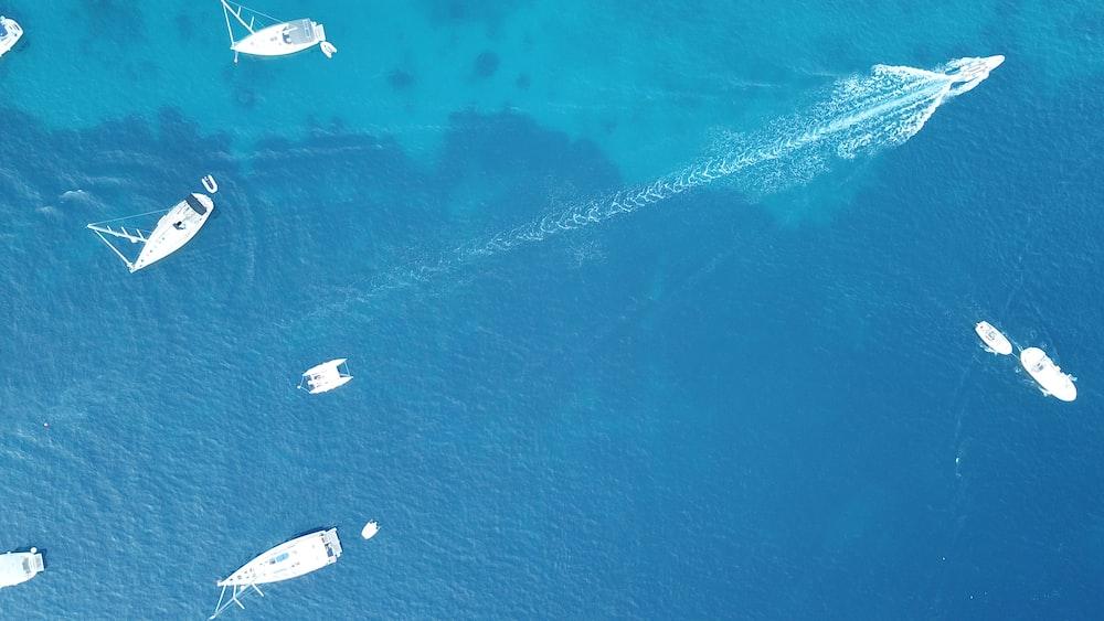 aerial photo of powerboats in ocean