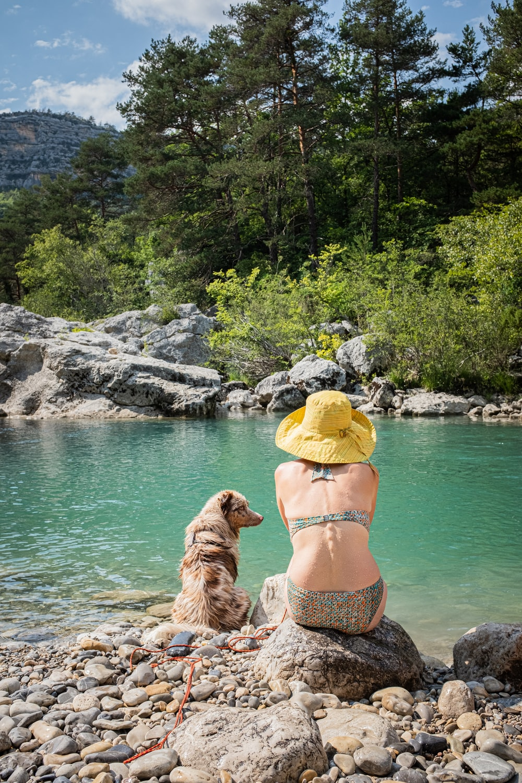 woman wears bikini beside dog at the lake