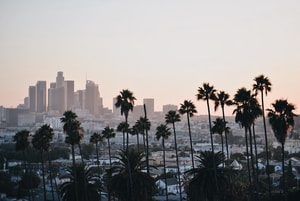 Business Tax Registration for Tutors Los Angeles