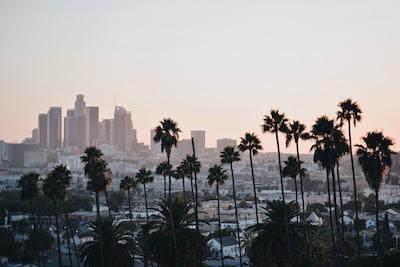 Business Tax Registration for Tutors Los Angeles