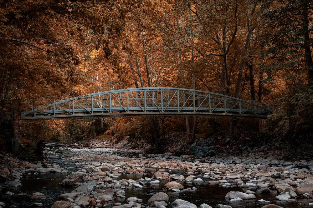 grey metal bridge