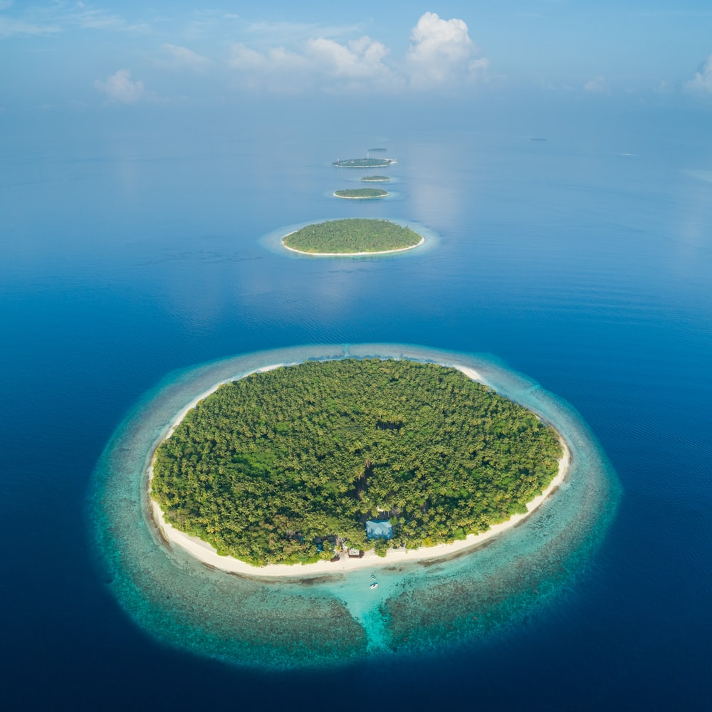 lined island during daytime