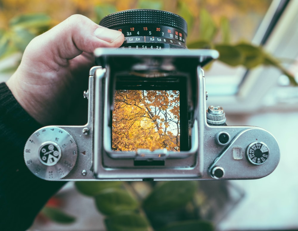 top view of SLR camera with yellow leaves tree