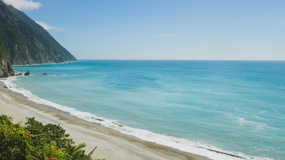 seashore scenery during daytime