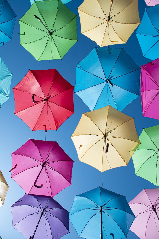 assorted color umbrella lot