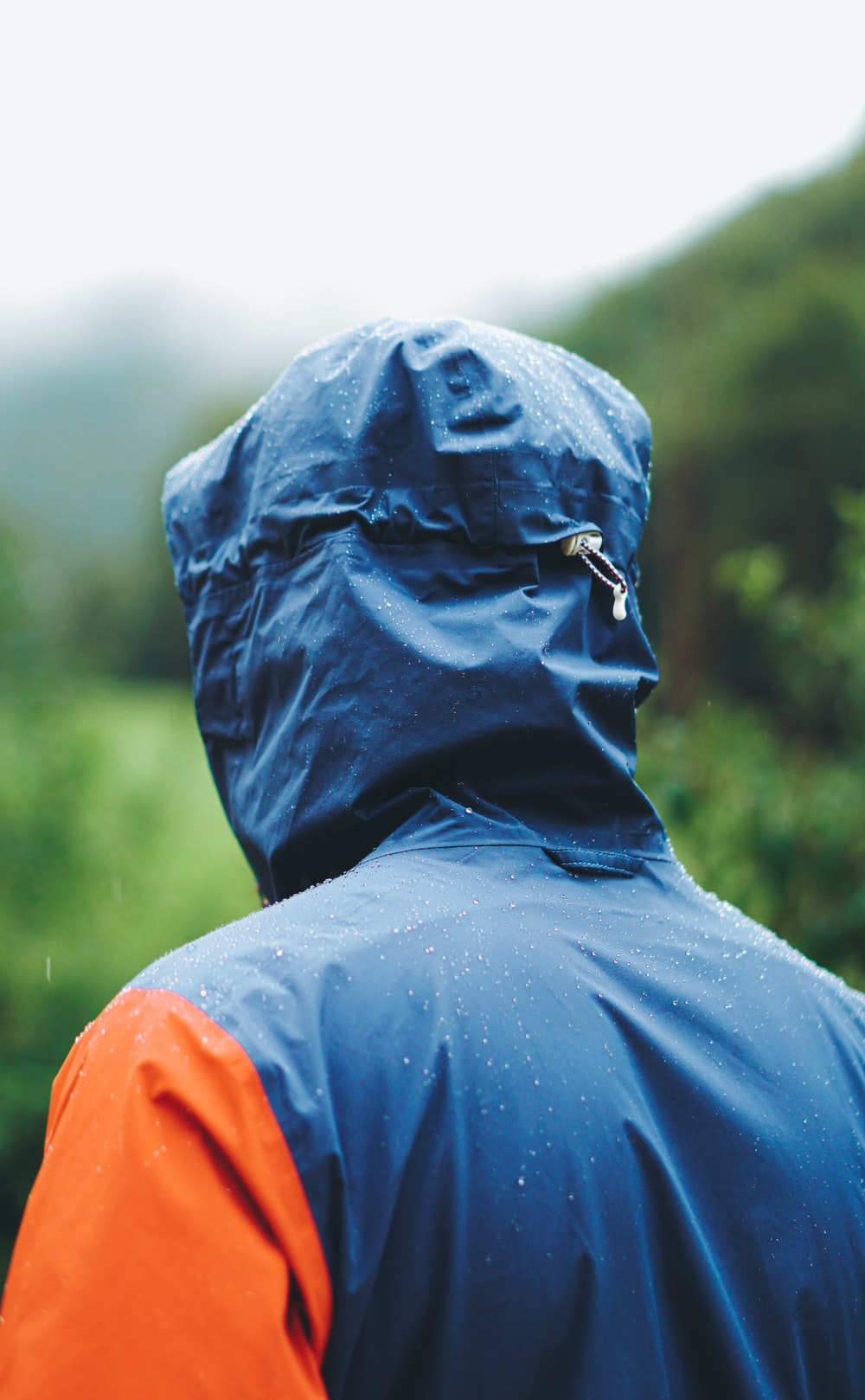 person wearing blue and orange hooded jacket standing while facing back