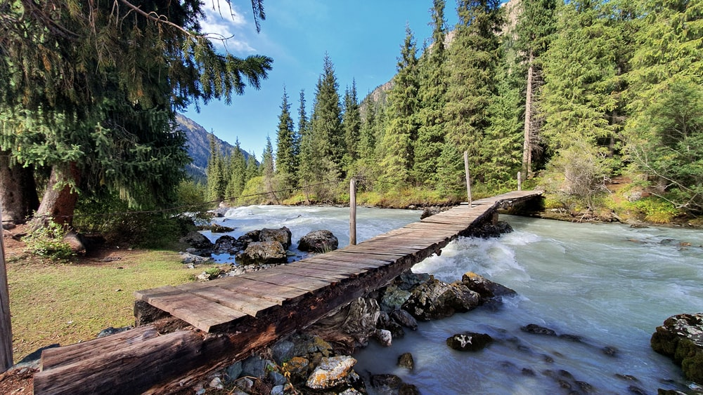 photo of river and brown wooden boardwalk