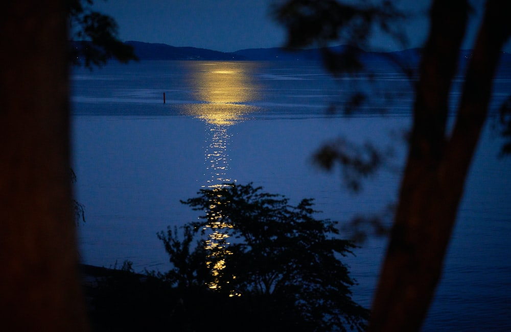 body of water with reflections of moonlight