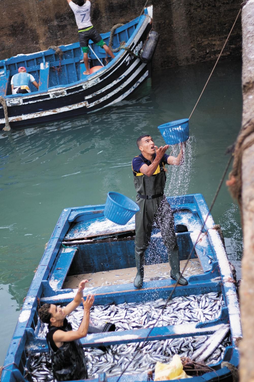 man on blue boat