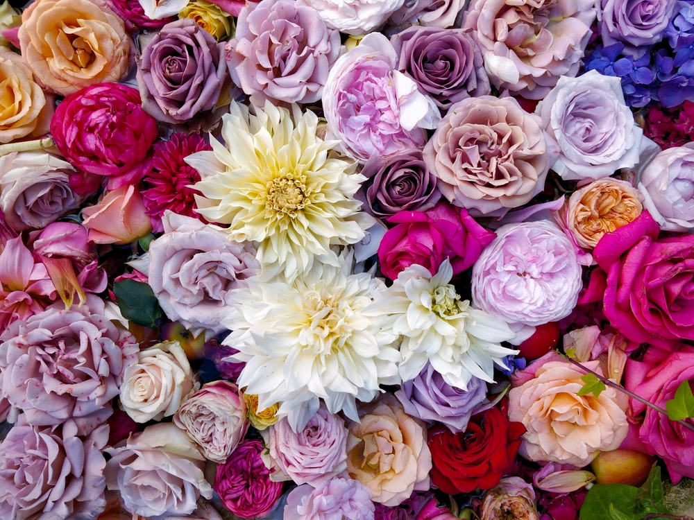 variety of flowers bouquet