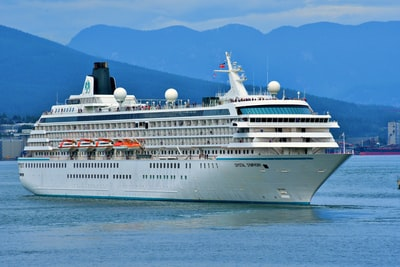 white cruise ship during daytime transportation zoom background
