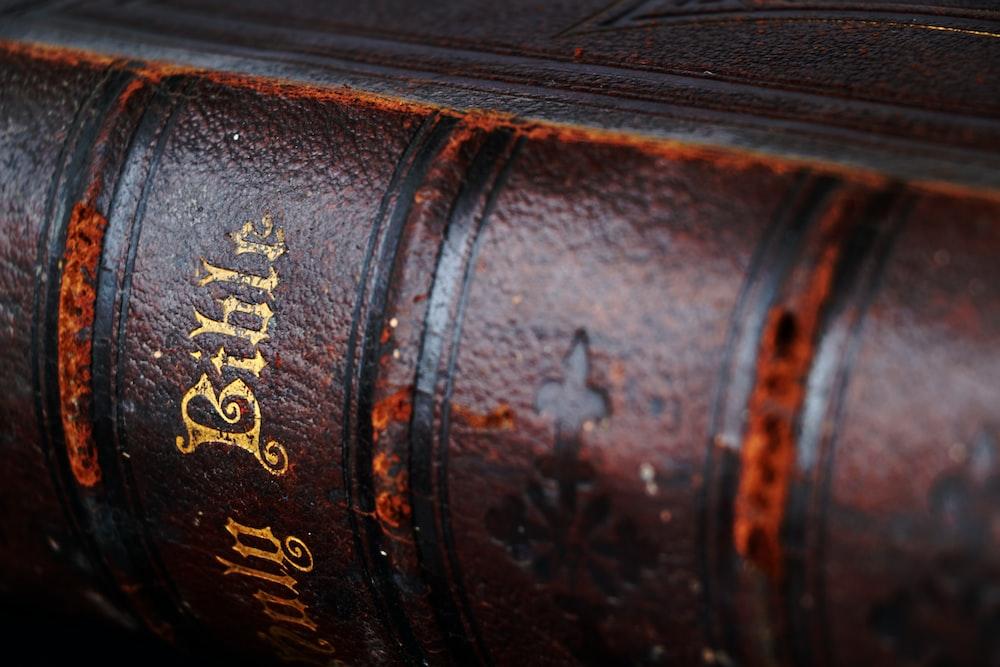 brown Bible book