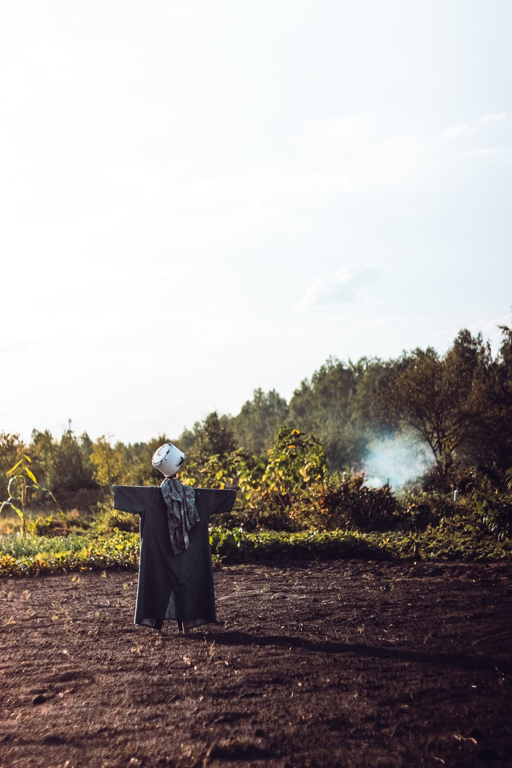 scarecrow on open field