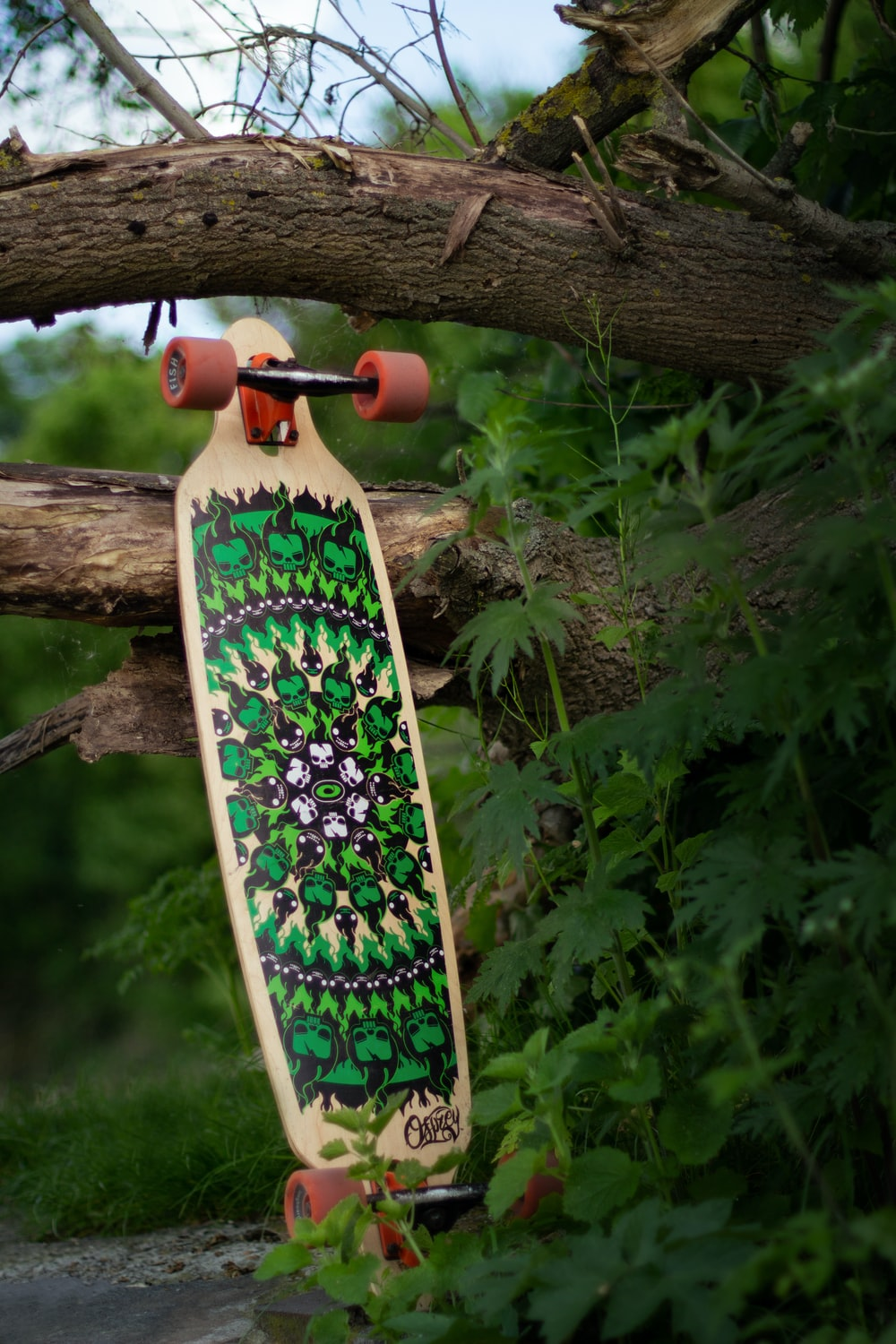 brown skateboard