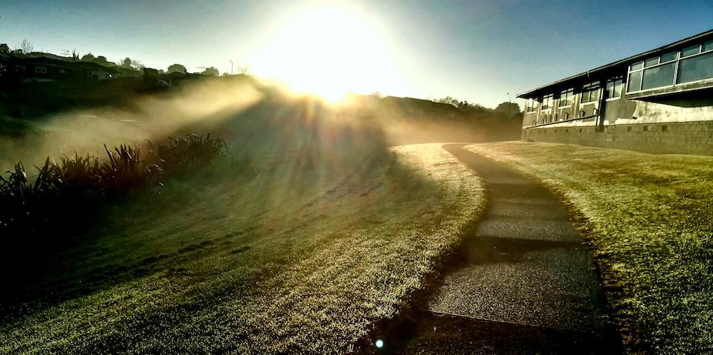 pathway between grass during daytime