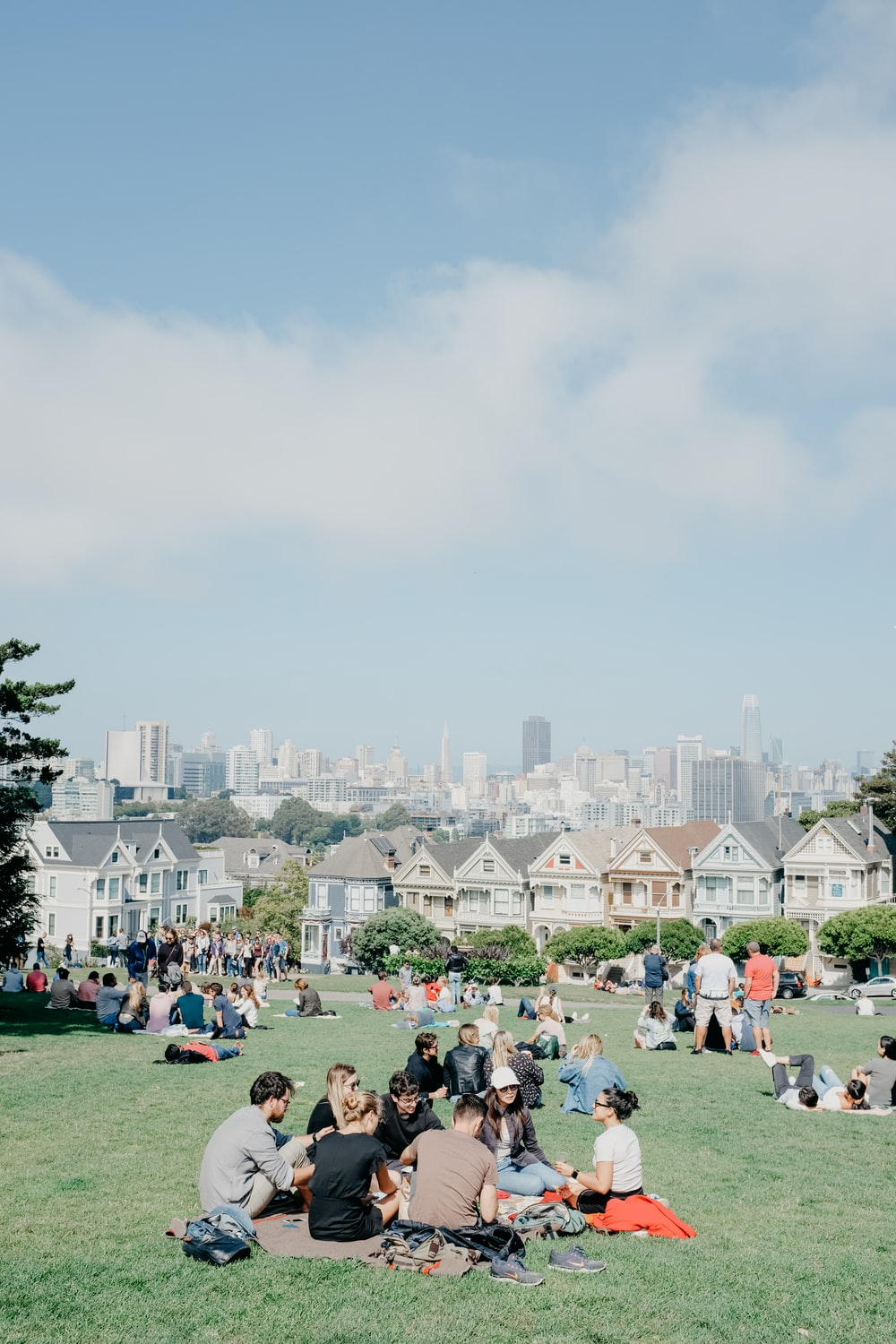 people sitting on grass field during daytime