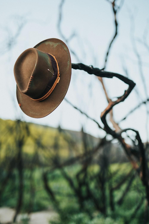 brown cowboy hat on brown twig
