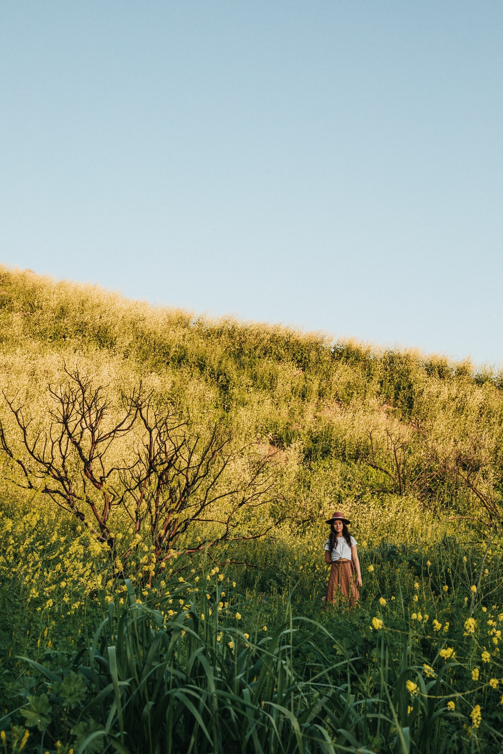 woman standing near yellow petaled flowers during daytime