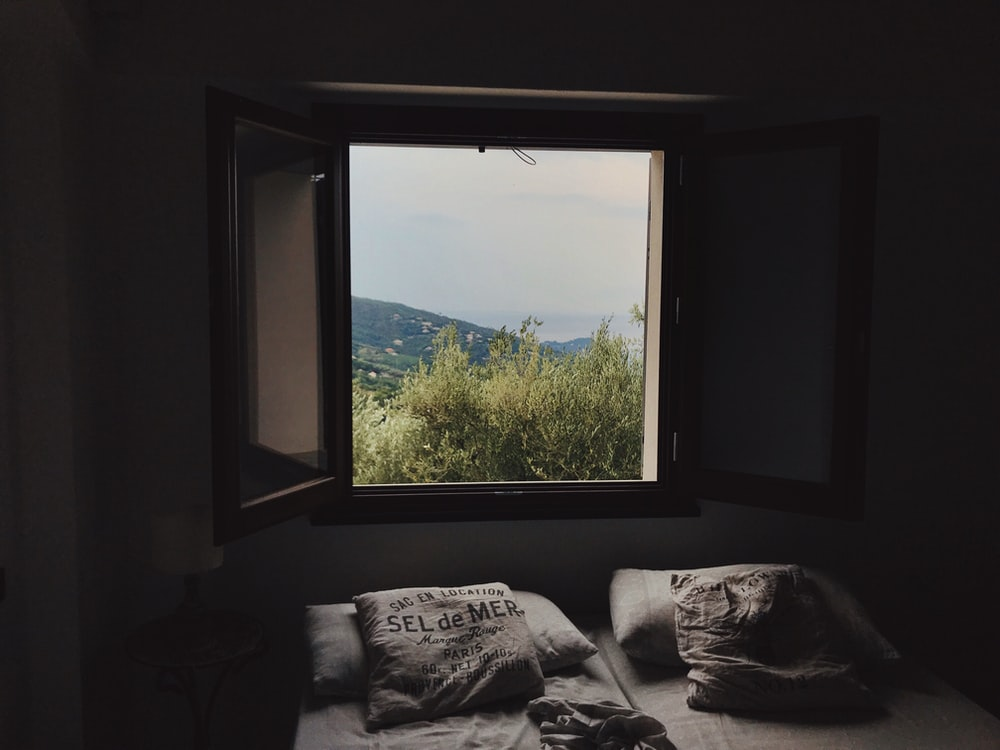 view of green trees from an open window