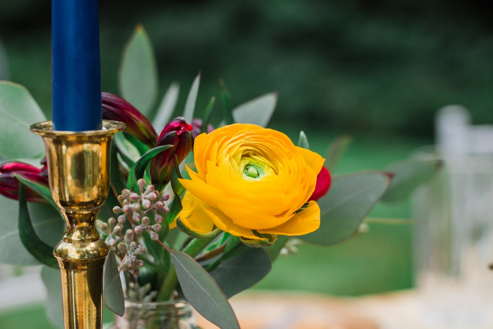 yellow flower near candle