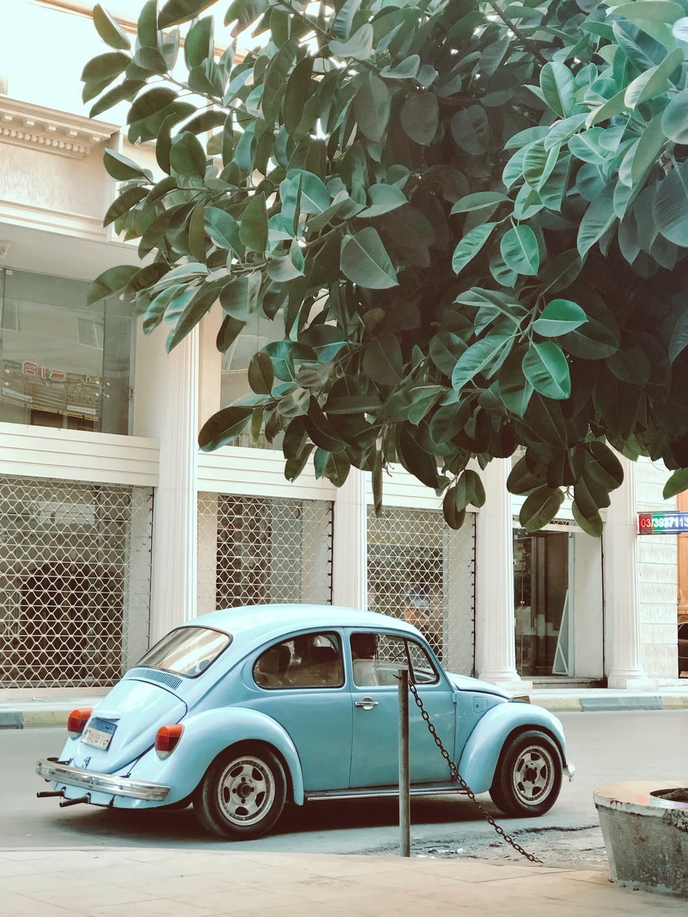 blue Volkswagen Beetle on road