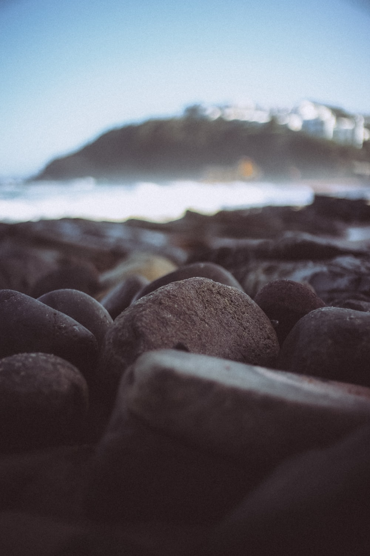 closeup photo of pebbles