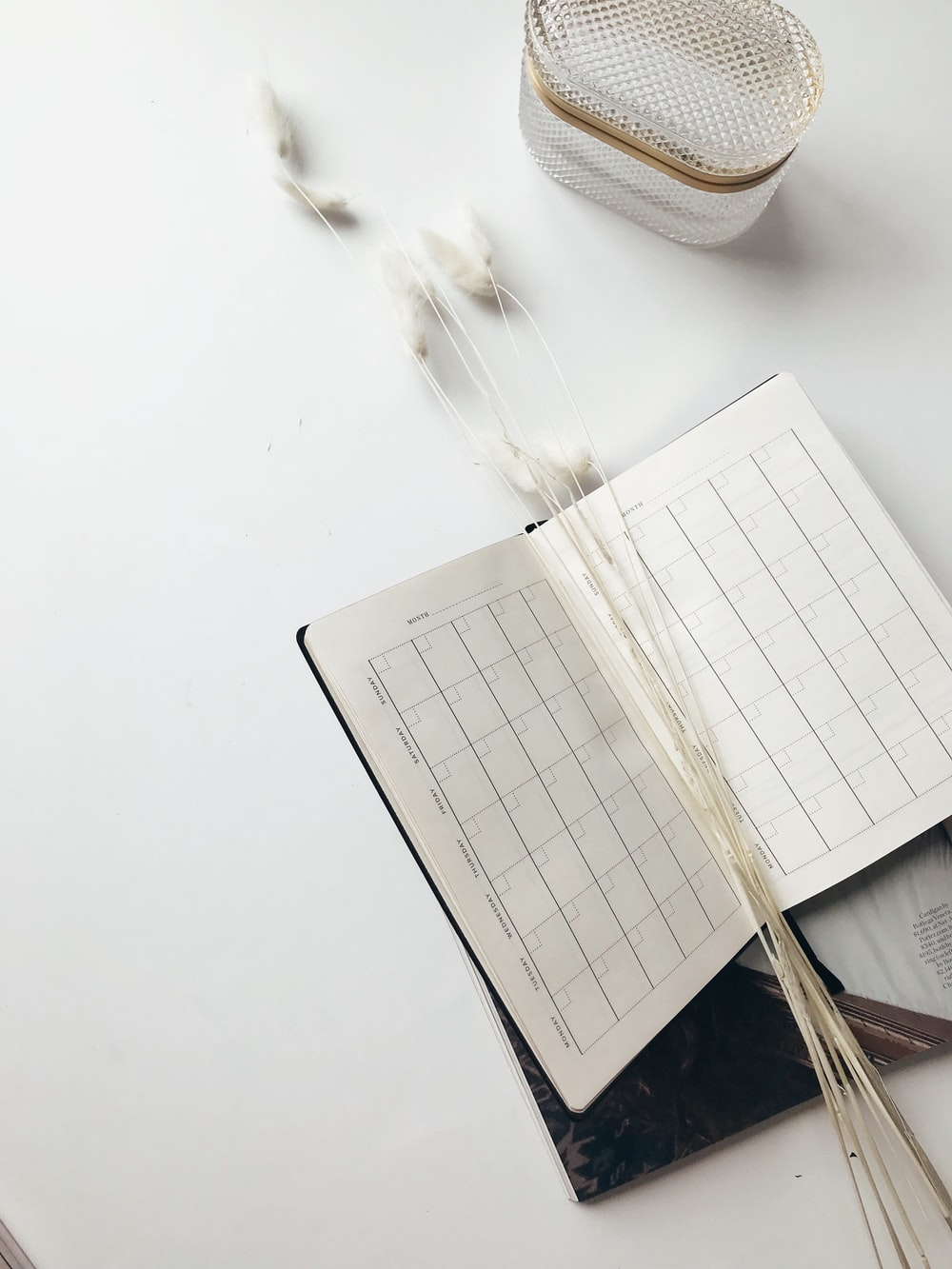 monthly planner book on white surface
