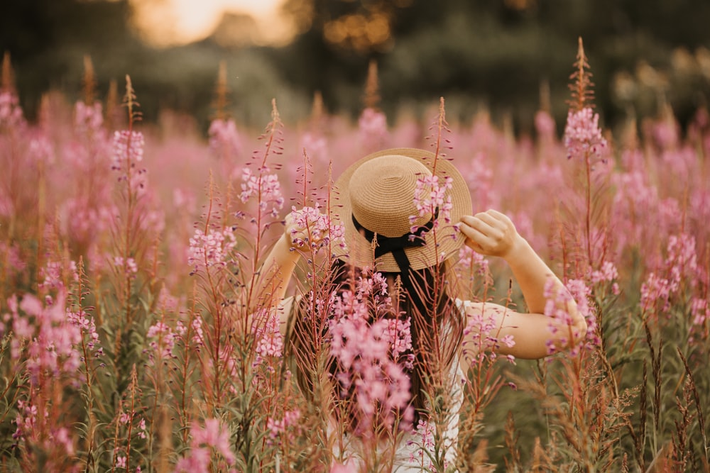 woman in white top on pink flower field