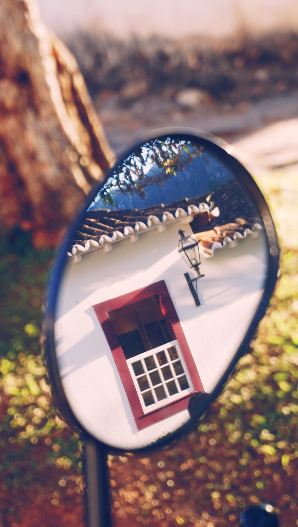brown and white window reflection and side mirror