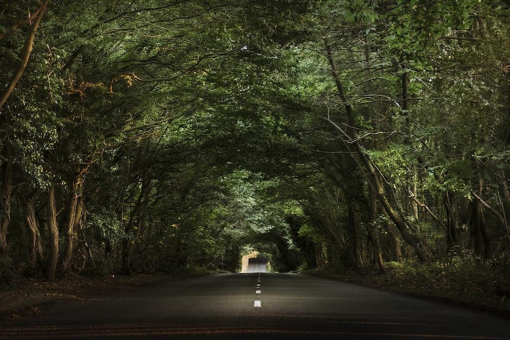 photo of asphalt road