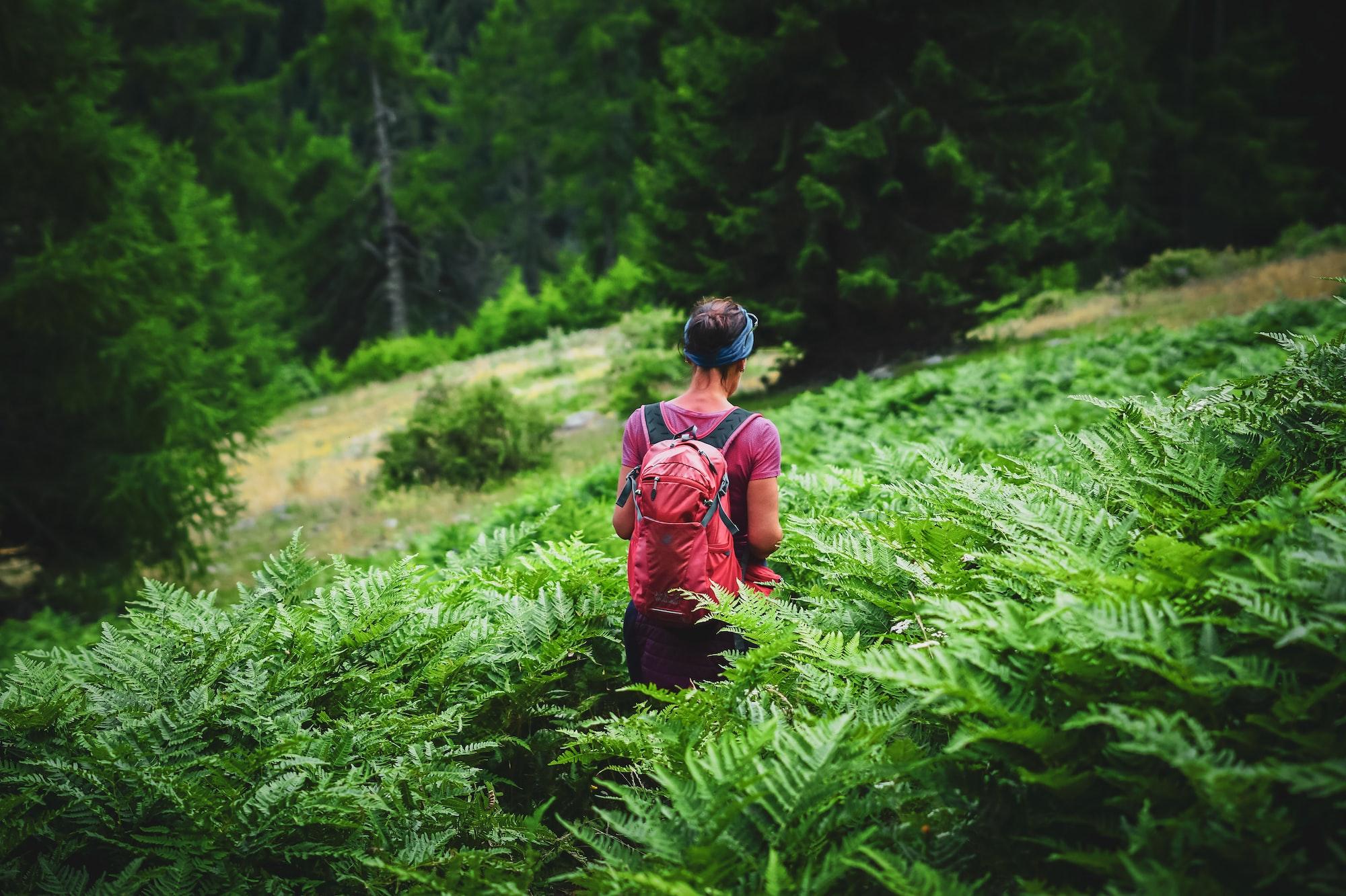Petra Krebs (Grüne) und Raimund Haser (CDU):  In der Krise nach vorne schauen: Baden-Württemberg fördert touristische Weiterentwicklung im Wahlkreis Wangen/Illertal