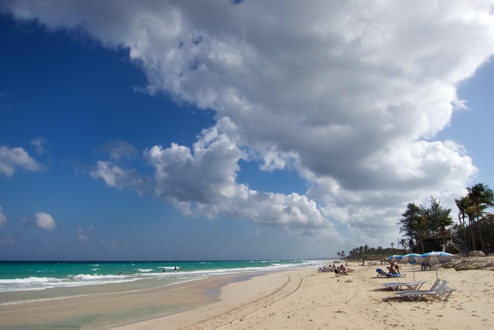 people sun bathing in sea shore