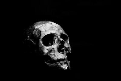 human skull in black - proud of death