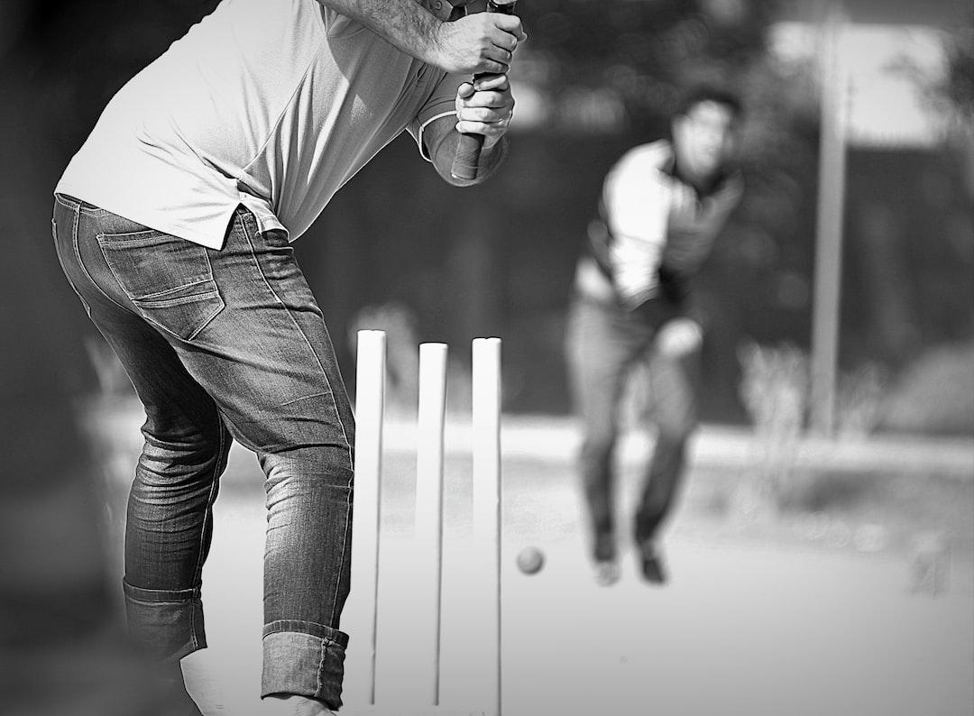 Cricket: LumenSoft Team in Action