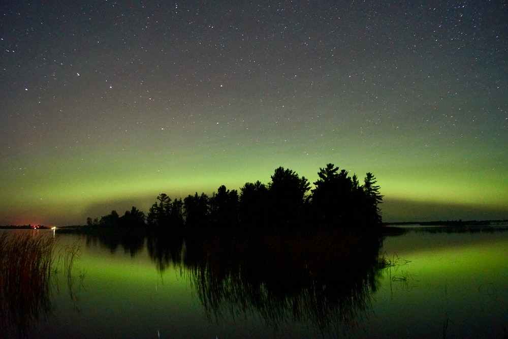 silhouette of trees and body of water during night time