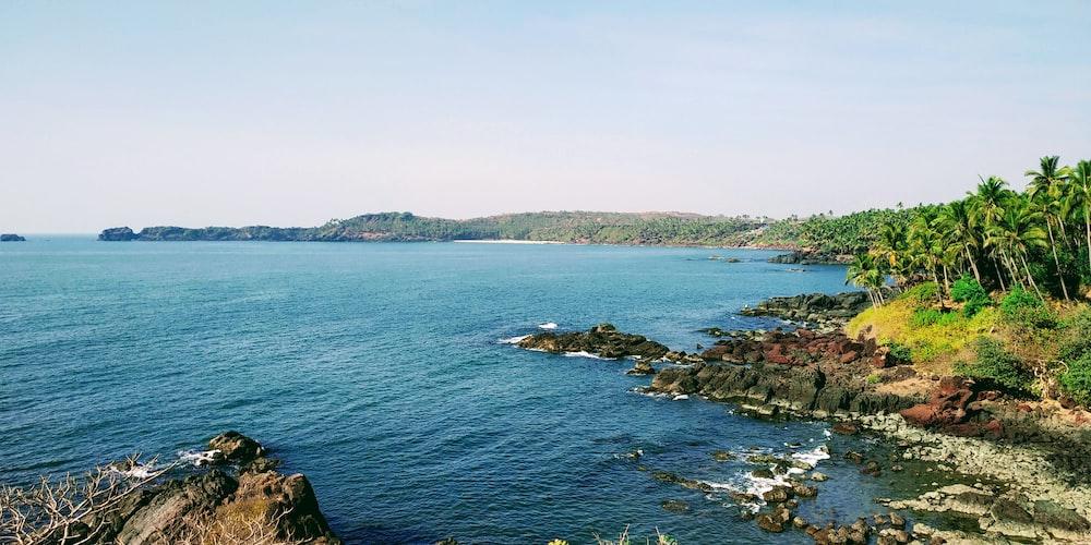 photo of shore